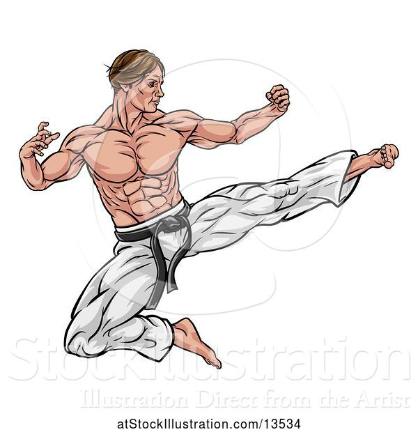 Vector Illustration of Muscular Kung Fu Martial Artist Kicking