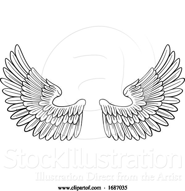 Vector Illustration of Pair of Angel or Eagle Bird Wings