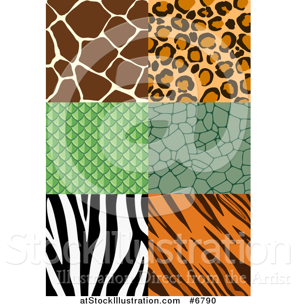 Vector Illustration of Seamless Animal Print Designs