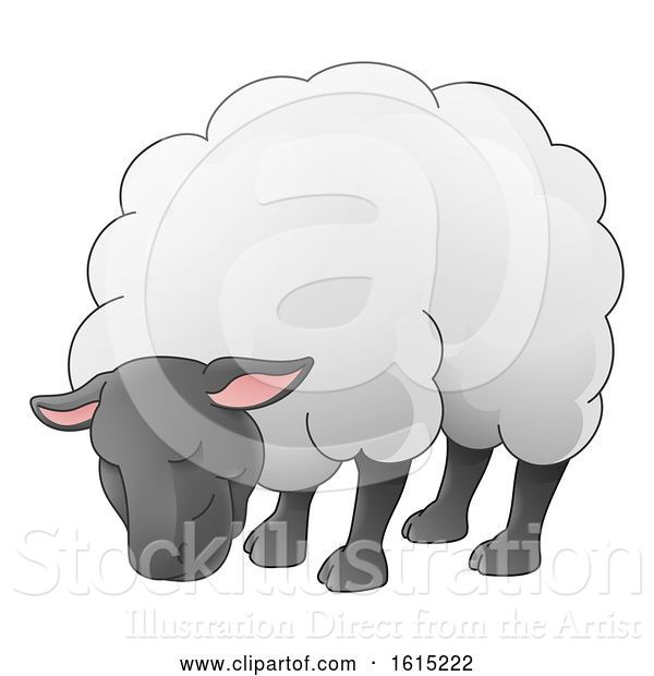 Vector Illustration of Sheep Animal Character