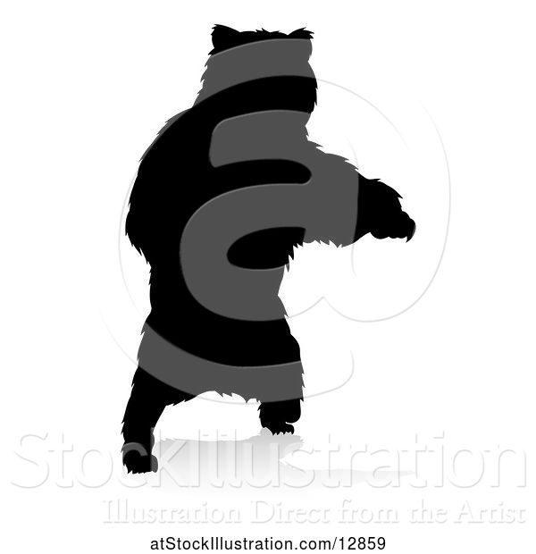 Vector Illustration of Silhouetted Bear, with a Reflection or Shadow, on a White Background