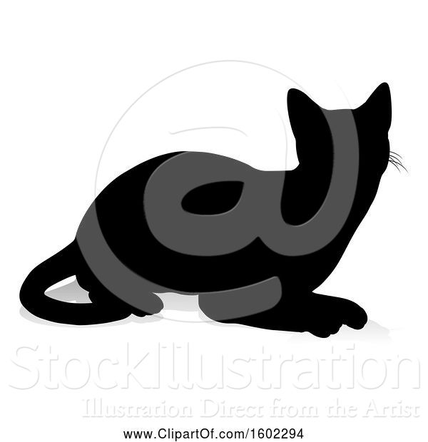 Vector Illustration of Silhouetted Cat, with a Shadow or Reflection, on a White Background