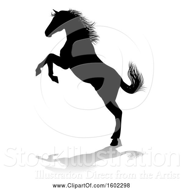 Vector Illustration of Silhouetted Horse, with a Reflection or Shadow, on a White Background
