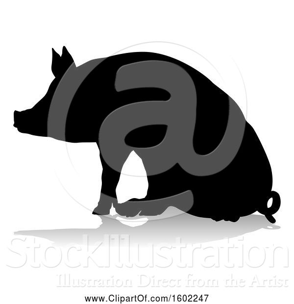 Vector Illustration of Silhouetted Pig, with a Reflection or Shadow, on a White Background