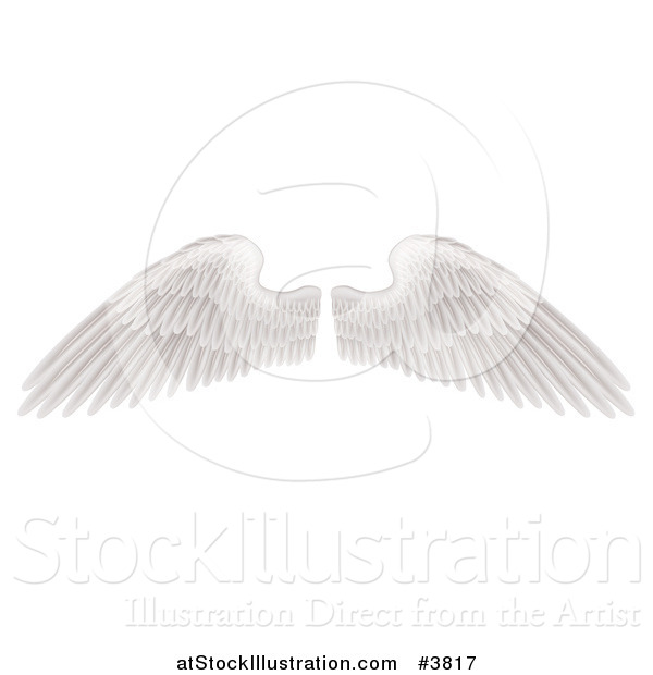 Vector Illustration of Spread White Feathered Wings