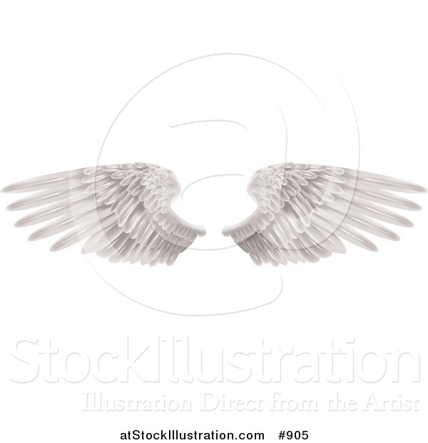 Vector Illustration of Two Large White Feathered Wings Spread Open, Isolated on White