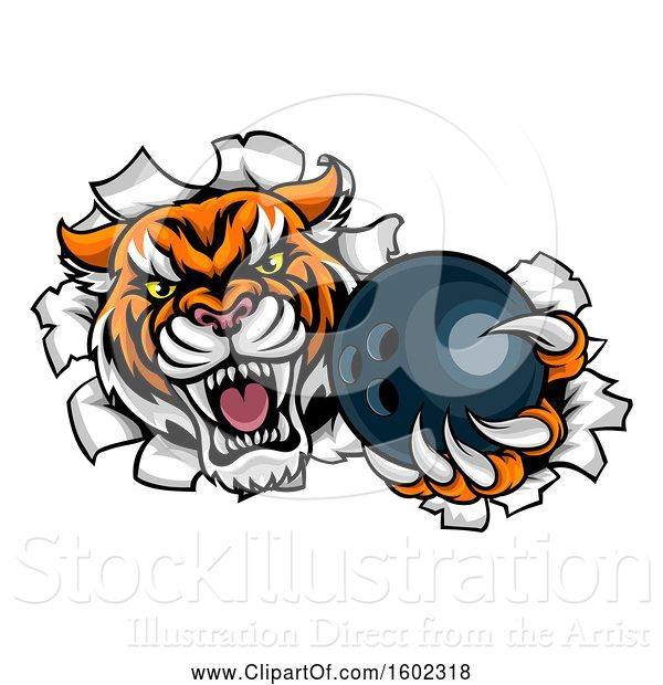 Vector Illustration of Vicious Tiger Mascot Breaking Through a Wall with a Bowling Ball