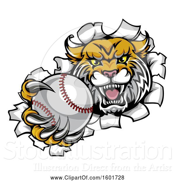 Vector Illustration of Vicious Wildcat Mascot Breaking Through a Wall with a Baseball