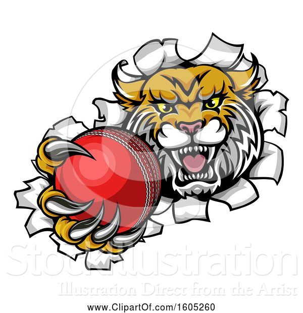 Vector Illustration of Vicious Wildcat Mascot Breaking Through a Wall with a Cricket Ball