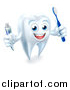 Vector Illustration of a 3d Happy White Tooth Character Smiling, Holding a Toothbrush and Tube of Toothpaste by AtStockIllustration