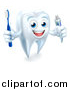 Vector Illustration of a 3d Smiling White Tooth Character Holding a Toothbrush and Tube of Toothpaste by AtStockIllustration