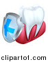 Vector Illustration of a 3d White Tooth and Gums with a Blue and Silver Protective Dental Shield by AtStockIllustration