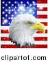 Vector Illustration of a Bald Eagle Head over an American Flag and Burst by AtStockIllustration