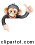 Vector Illustration of a Cartoon Black and Tan Happy Baby Chimpanzee Monkey Giving a Thumb up and Pointing down over a Sign by AtStockIllustration