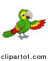 Vector Illustration of a Cartoon Green Macaw Parrot Presenting by AtStockIllustration