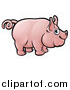 Vector Illustration of a Cartoon Happy Pig with a Curly Tail by AtStockIllustration