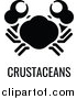 Vector Illustration of a Crab over Crustaceans Text by AtStockIllustration