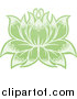 Vector Illustration of a Green Blooming Lotus Flower by AtStockIllustration