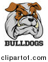Vector Illustration of a Growling Aggressive Bulldog Mascot Face over Text by AtStockIllustration