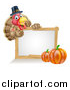 Vector Illustration of a Happy Thanksgiving Pilgrim Turkey Bird Giving a Thumb up over a Blank White Board Sign with Pumpkins by AtStockIllustration