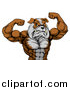 Vector Illustration of a Muscular Bulldog Man Mascot Flexing, from the Waist up by AtStockIllustration