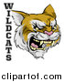 Vector Illustration of a Roaring Aggressive Bobcat Mascot Head and WILDCATS Text by AtStockIllustration