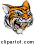 Vector Illustration of a Roaring Angry Tiger Mascot Head by AtStockIllustration