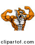 Vector Illustration of a Roaring Tough Tiger Man Flexing His Big Muscles by AtStockIllustration