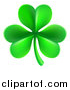 Vector Illustration of a St Patricks Day Shamrock Clover Leaf by AtStockIllustration