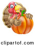 Vector Illustration of a Turkey Bird Giving a Thumb up and Looking Around a Thanksgiving Pumpkin by AtStockIllustration