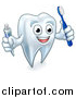 Vector Illustration of a White Tooth Character Holding a Toothbrush and Tube of Toothpaste by AtStockIllustration