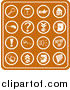 Vector Illustration of Orange Web Icons Including a Magnifying Glass, Disc, Pointer, Home, Computer Mouse, Question Mark, Key, Exclamation Point, Padlock, Speaker, Www, Screen, Camera and Email by AtStockIllustration