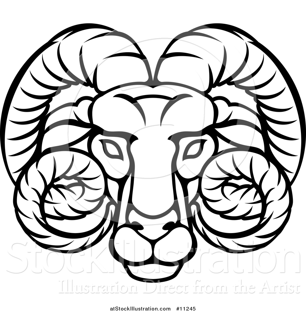 f7348a5fd Vector Illustration of a Black and White Lineart Aries Ram Astrology Zodiac  Horoscope