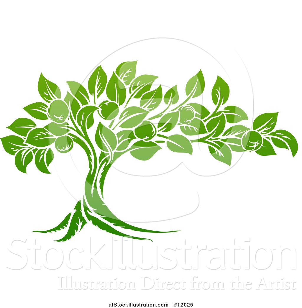 Vector Illustration Of A Green Apple Tree By Atstockillustration