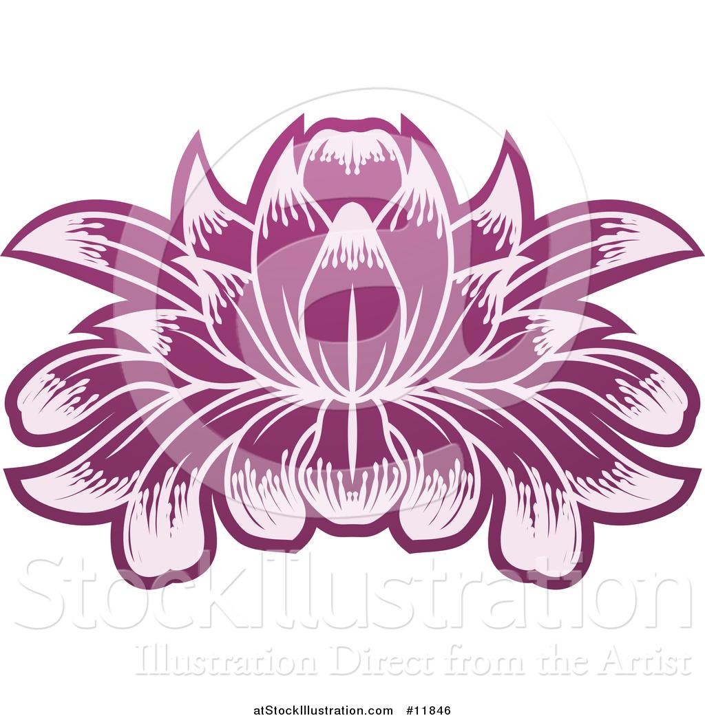 Vector illustration of a purple blooming lotus flower by vector illustration of a purple blooming lotus flower izmirmasajfo