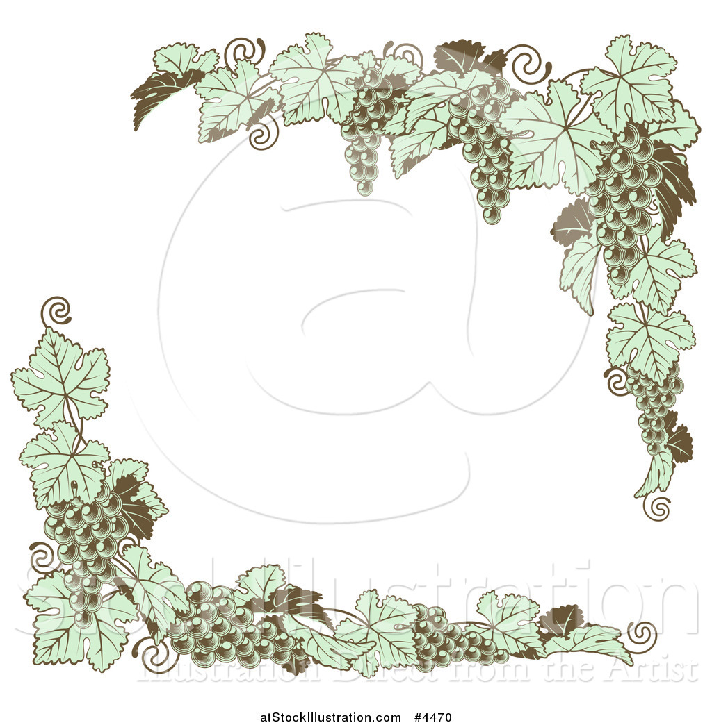 Vector Illustration Of Vintage Green Grape Vine Corner Borders By Atstockillustration 4470